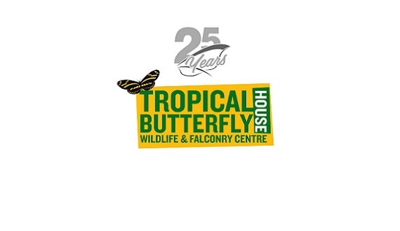 Tropical Butterfly House Video